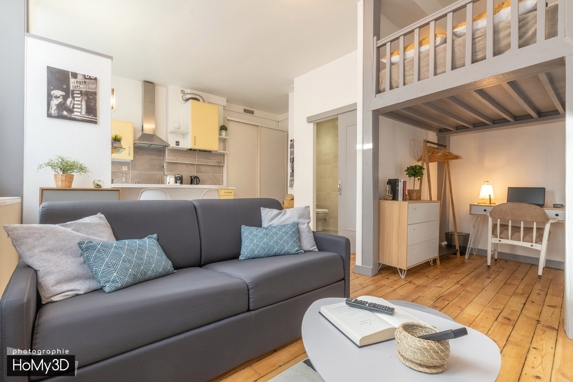appartement-st-etienne-salon-mezzanine