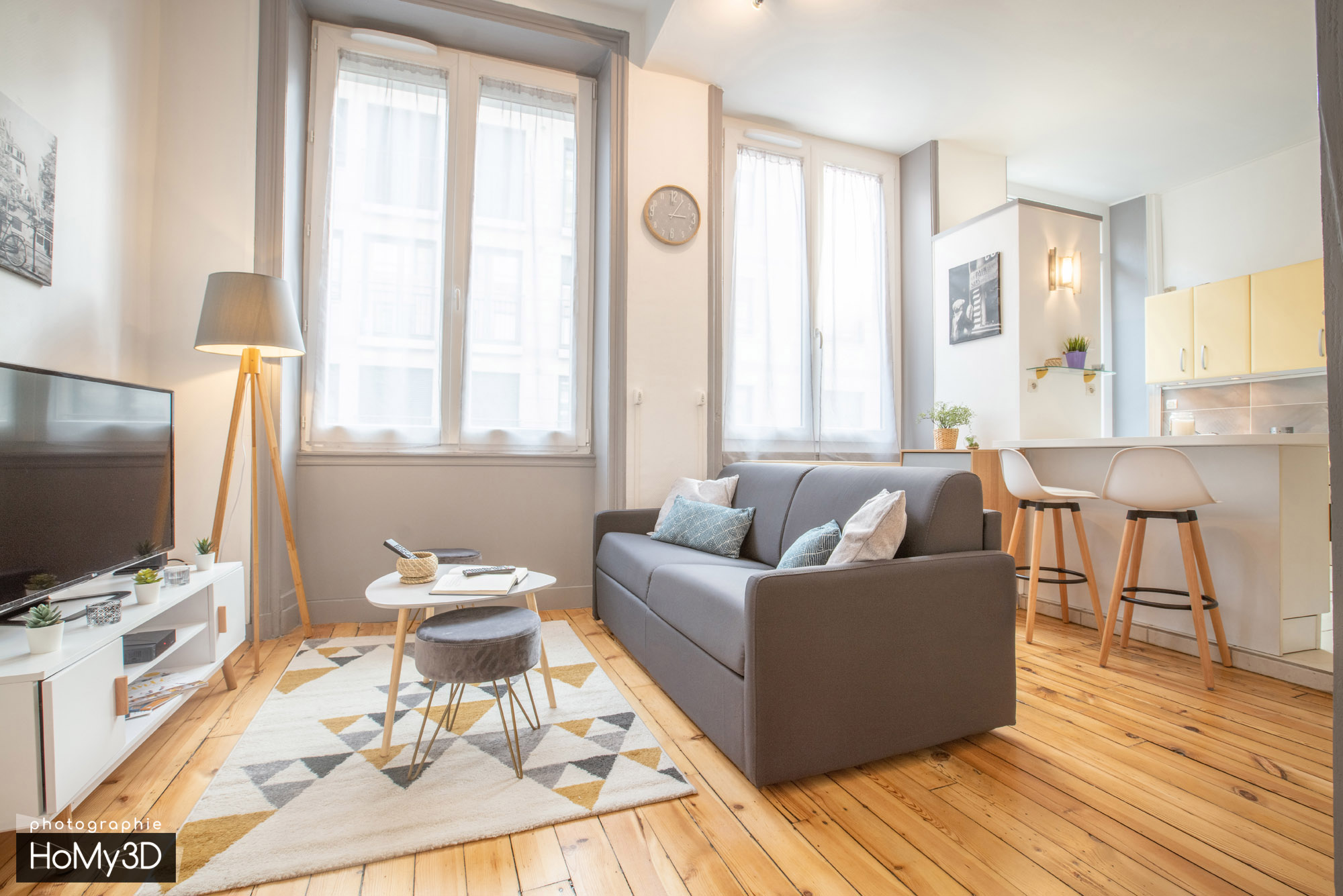 appartement-st-etienne-salon-moderne
